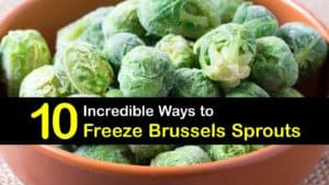 How to Freeze Brussels Sprouts titleimg1