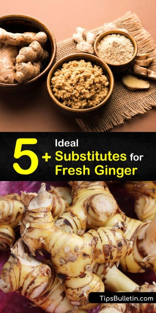 Discover the best fresh ginger substitution. If a recipe calls for a tablespoon of fresh ginger root, use a quarter-teaspoon of ground ginger, or three tablespoons of candied ginger. For a different flavor, substitute allspice, cardamom, or turmeric. #substitute #fresh #ginger