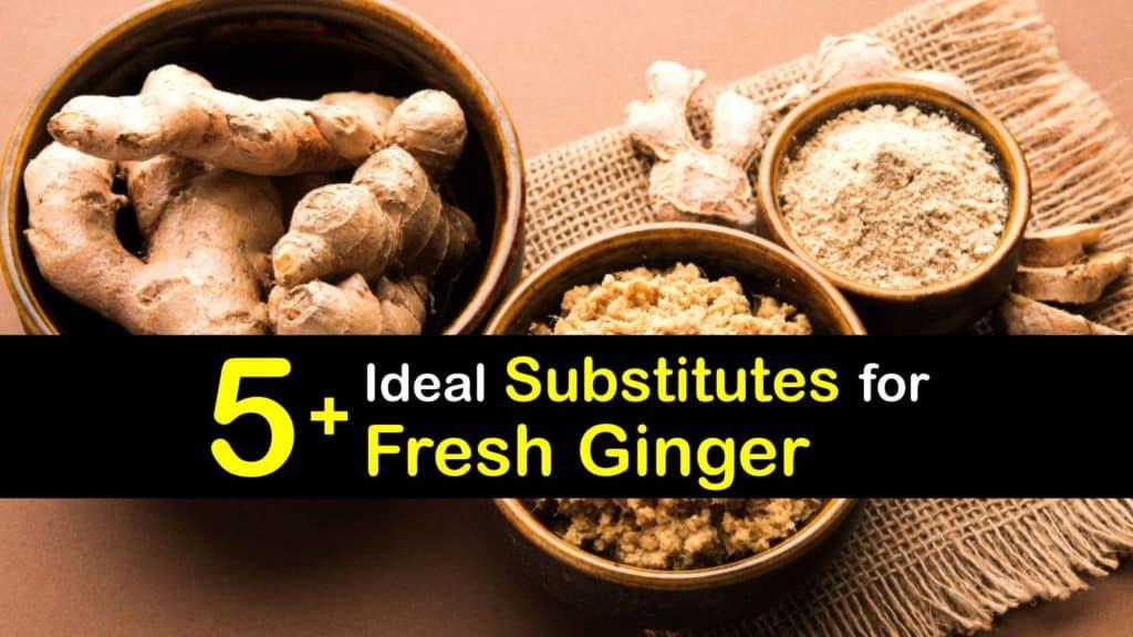 Substitute for Fresh Ginger titleimg1