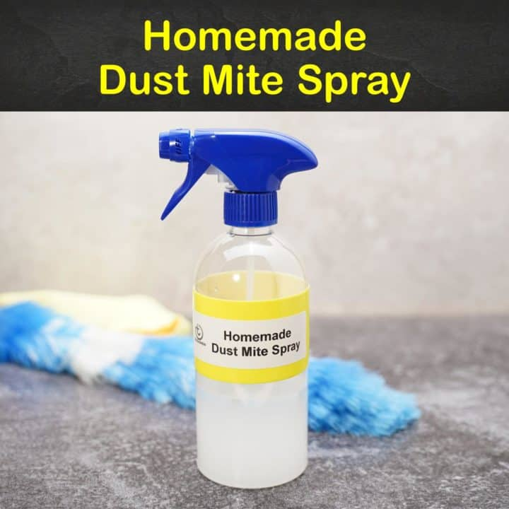 Homemade Dust Mite Spray