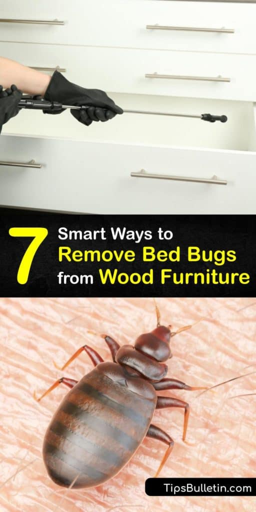 Learn where bed bugs hide and how to kill bed bugs without having to call in pest control services. There are many hiding places in a piece of furniture and it's vital to use insecticides and other treatments to kill these insects and prevent their return. #wood #furniture #remove #bedbugs