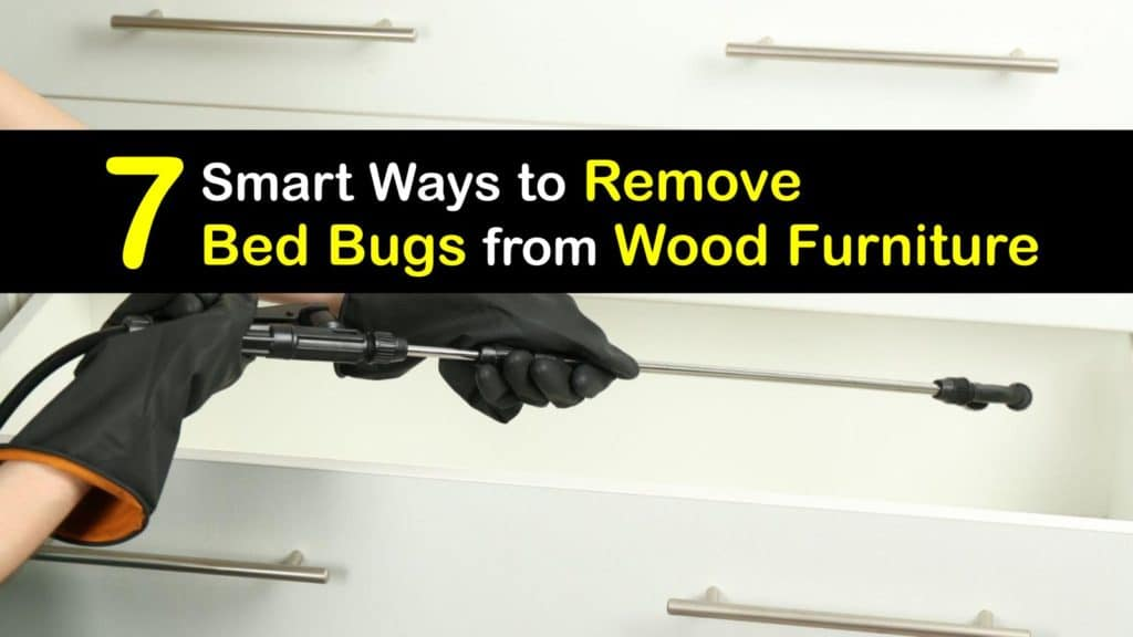 How to Remove Bed Bugs from Wood Furniture titleimg1