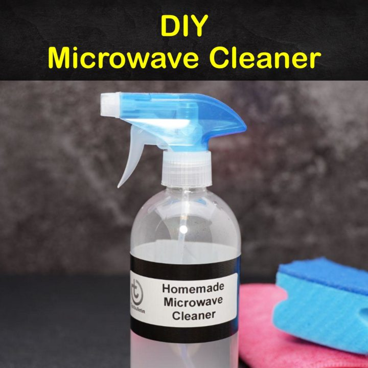 Homemade Microwave Cleaner