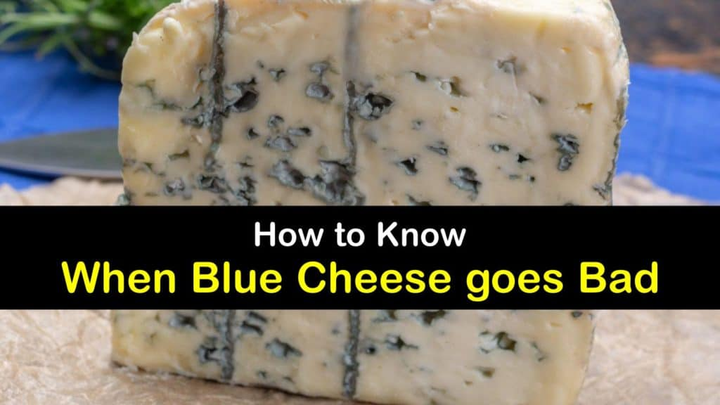 Does Blue Cheese go Bad titleimg1