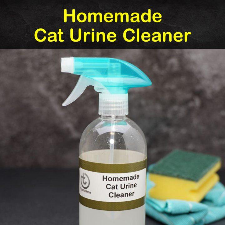 Homemade Cat Urine Cleaner
