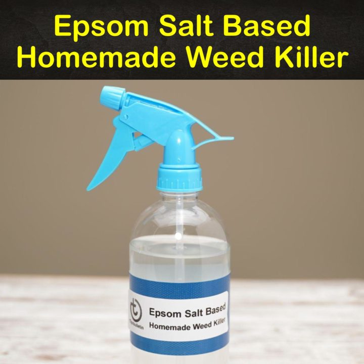Epsom Salt Based Homemade Weed Killer