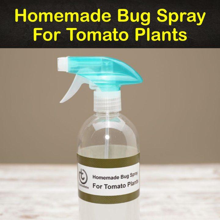 Homemade Bug Spray for Tomato Plants