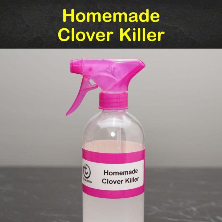 Homemade Clover Killer