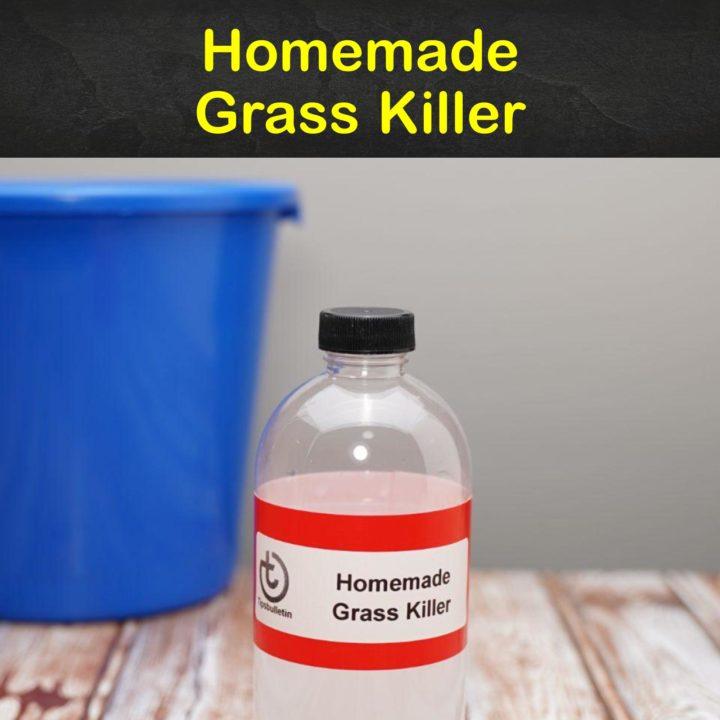 Homemade Grass Killer