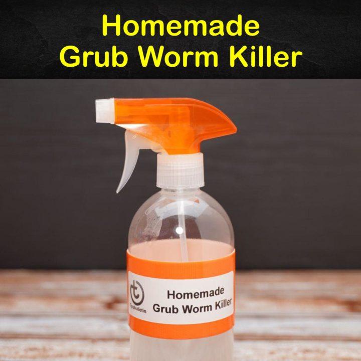 Homemade Grub Worm Killer
