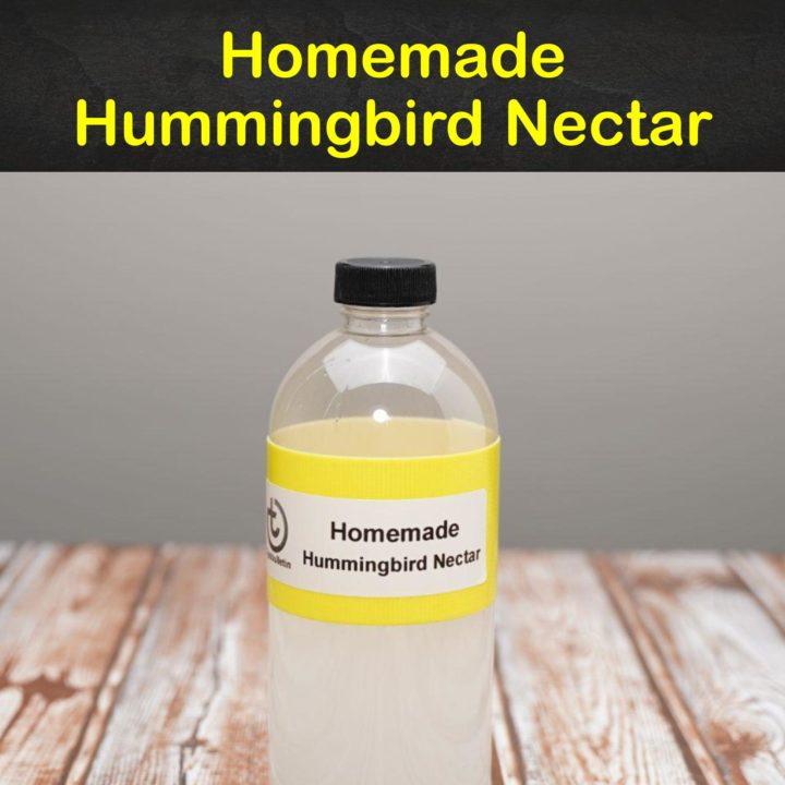 Homemade Hummingbird Nectar