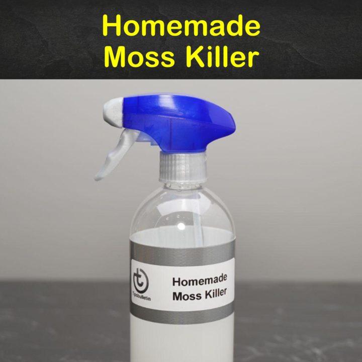 Homemade Moss Killer