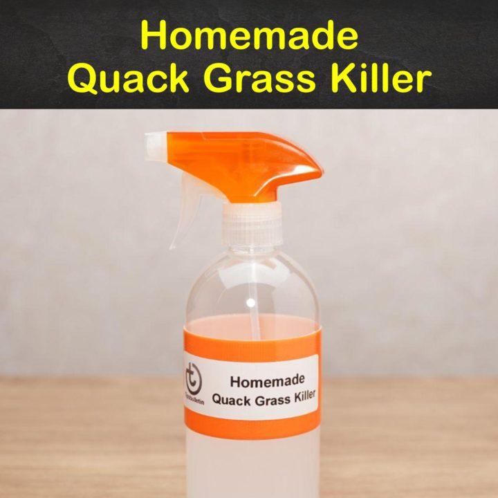 Homemade Quack Grass Killer