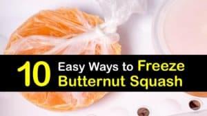 How to Freeze Butternut Squash titleimg1