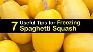 How to Freeze Spaghetti Squash titleimg1