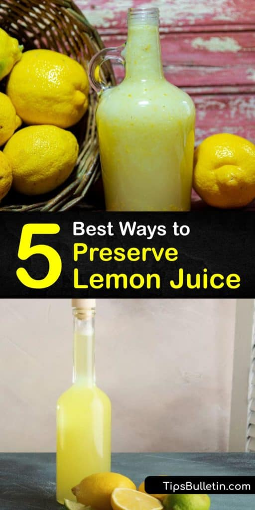 Utilize every single lemon from your lemon tree by juicing them with a juicer, canning them in a glass jar, and making frozen lemon cubes. These fun preservation methods outlast storing them at room temperature and use the lemon zest, rind, and juice so none gets wasted. #preserve #lemon #juice