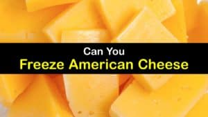 Can You Freeze American Cheese titleimg1