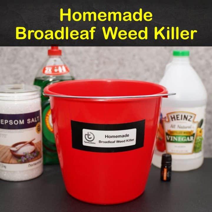 Homemade Broadleaf Weed Killer