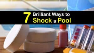 How to Shock a Pool titleimg1